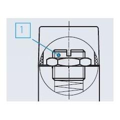 Schéma Pressostat à contact inverseur, tarage jusque 400 bar, 250 V maxi, G1/4 femelle